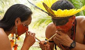 Rapé is legal sacred shamanic snuff medicine